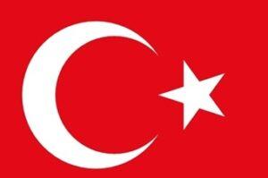 ab-yerine-turkiyeye-yoneldiler_601470_340_226